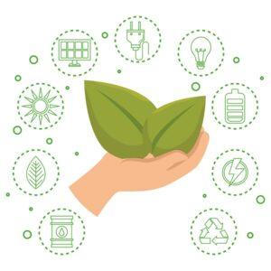 Brazabe e Sustentabilidade